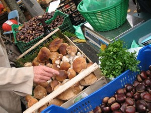 Select mushrooms - or chestnuts of your choice